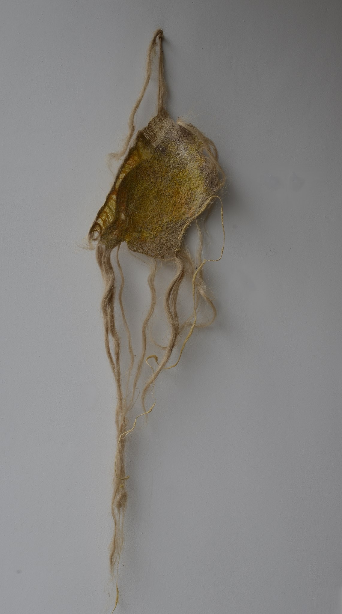 Veronique Cardinael